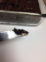 metal knife brownie
